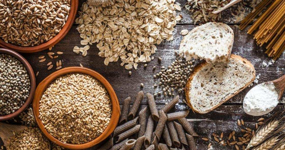 How the body uses carbohydrates and fats for energy